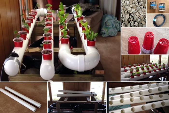 Гидропонная установка для выращивания растений.