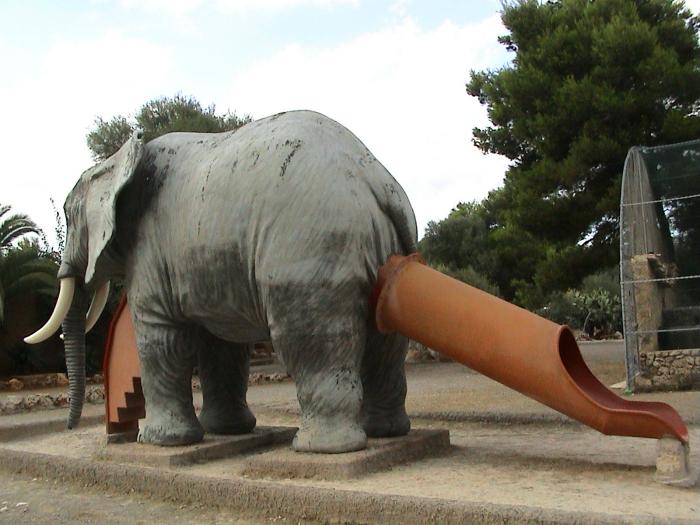 «Кто еще хочет знать, что у слоника под хвостиком!?»
