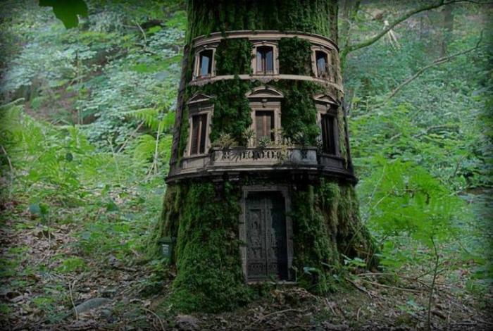 Потрясающий домик внутри большого дерева.