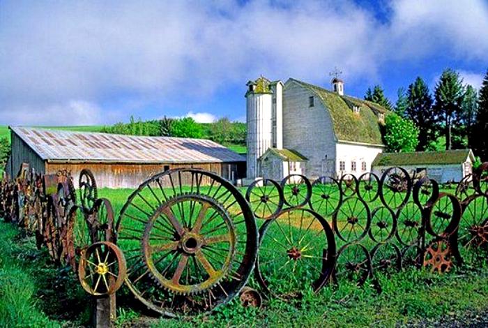 Забор из старых колес от телег.