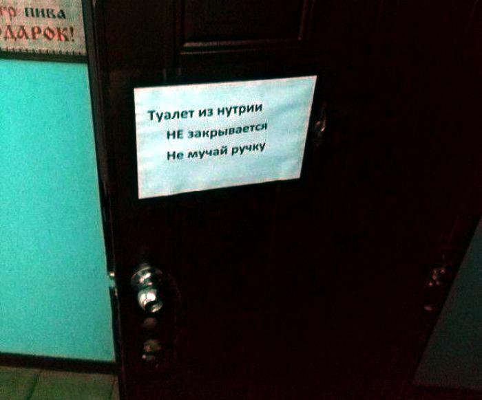 Novate.ru дарит вам удивительную возможность взглянуть на уникальное явление – туалет из нутрии. | Фото: Prikolno.cc.