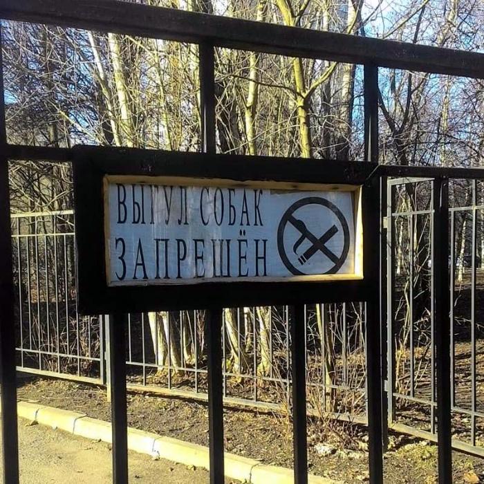 Выгул курящих собак запрещен.