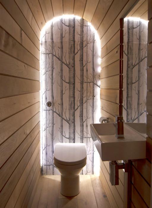 Необычное оформление туалета.