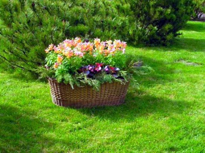 Цветочные корзины. | Фото: Садовий журнал.