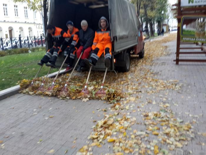Лайфхак по уборке листьев.