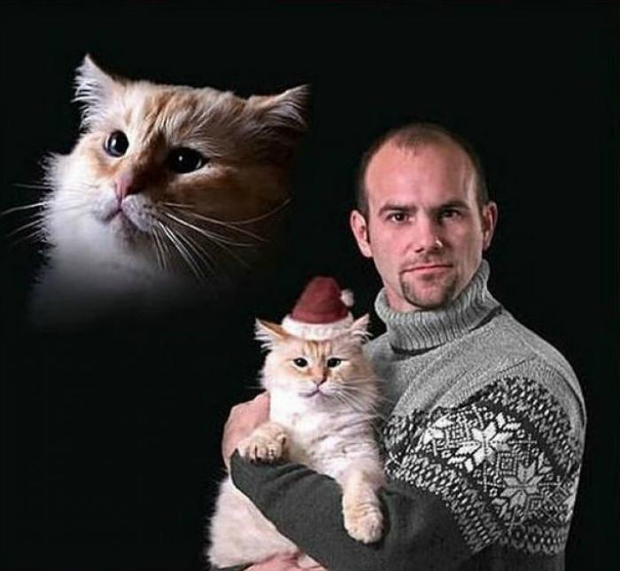 Только мы с котом...