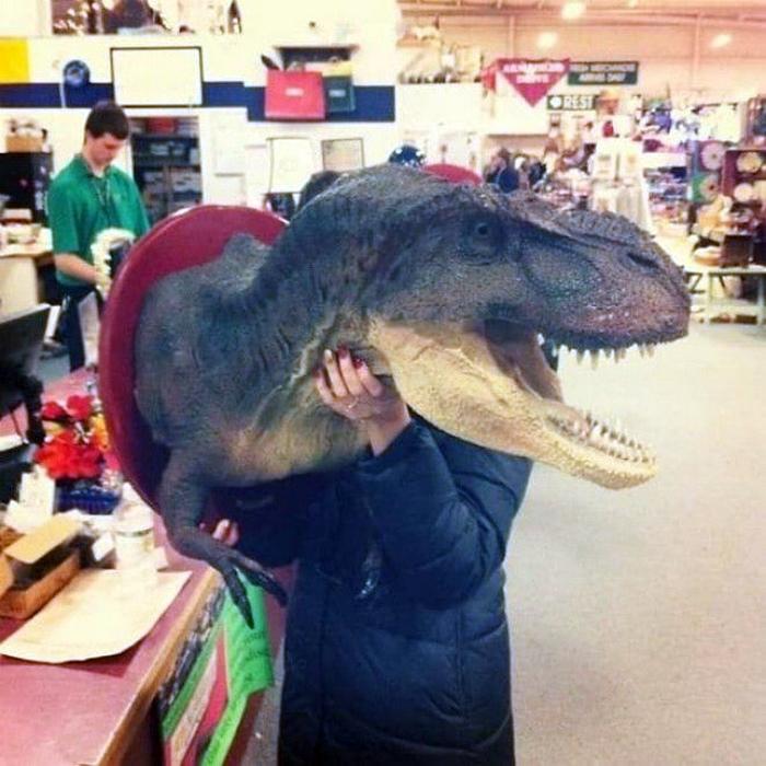 Голова динозавра.