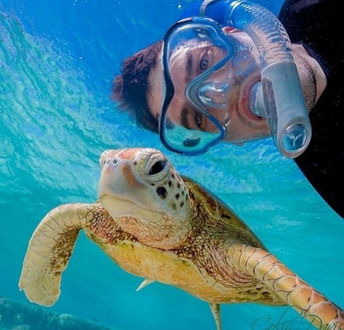 Снимок с гигантской черепахой.