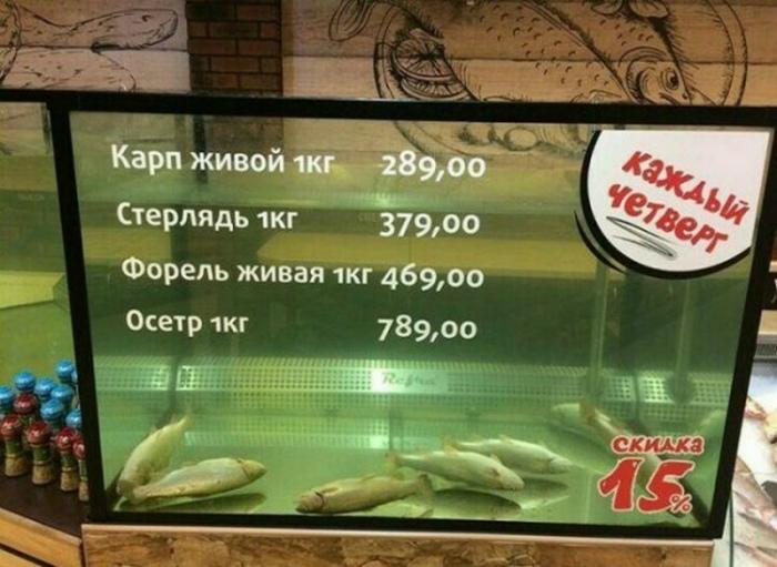 Ни рыба, ни мясо... | Фото: AGENT MDK.