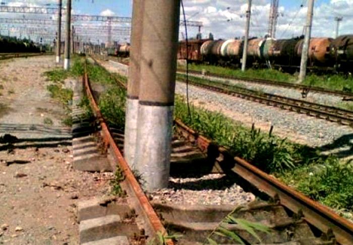 «Не трамвай, объедет!» | Фото: informburo.dn.ua.