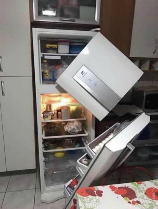 «Нет, нет... только не холодильник!» | Фото: Pressa.tv.