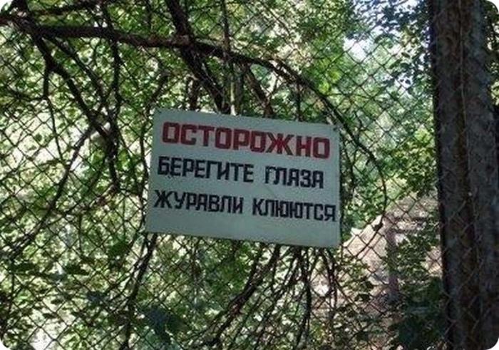 Заметки Капитана Очевидность на Novate.ru. | Фото: Конт.