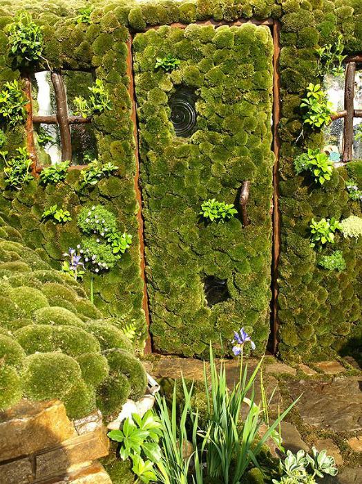 Садовая дверь, поросшая зеленым мхом.