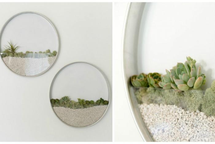 Оригинальные настенные горшки из стекла от дизайнера Ким Фишер.