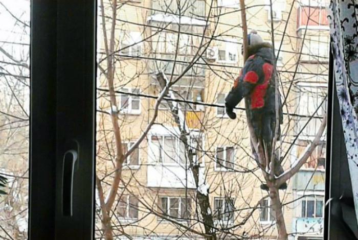 Гуляет на виду у мамы. | Фото: Юмор рунета.