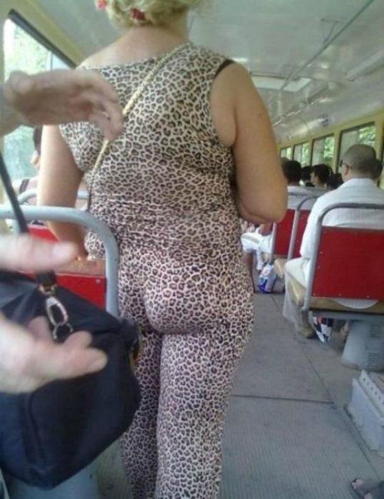 leopardo salvaje.