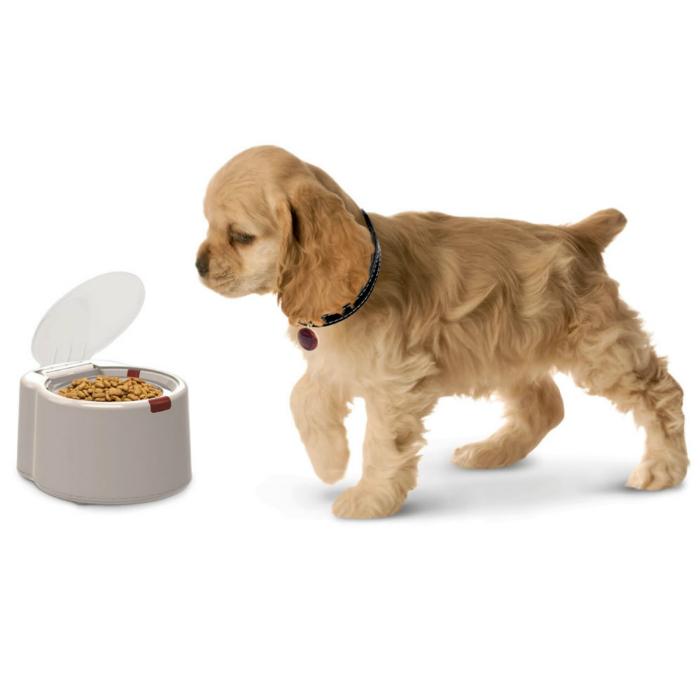Собачья миска с крышкой, которая автоматически открывается, когда питомец приближается к ней.