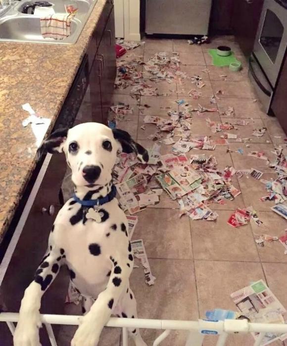 Почитал газетки.