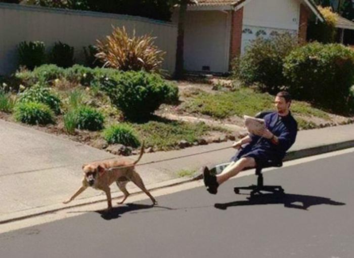 Утренняя прогулка с собакой.