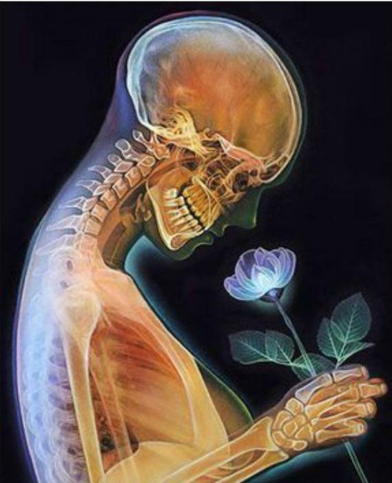 Девушка с цветком.