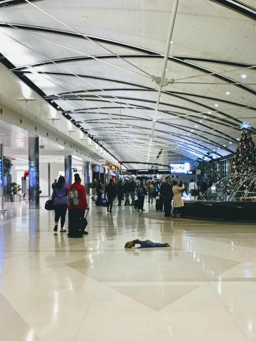 Настроение: лежать на полу и прикидываться мертвым. | Фото: Reddit.