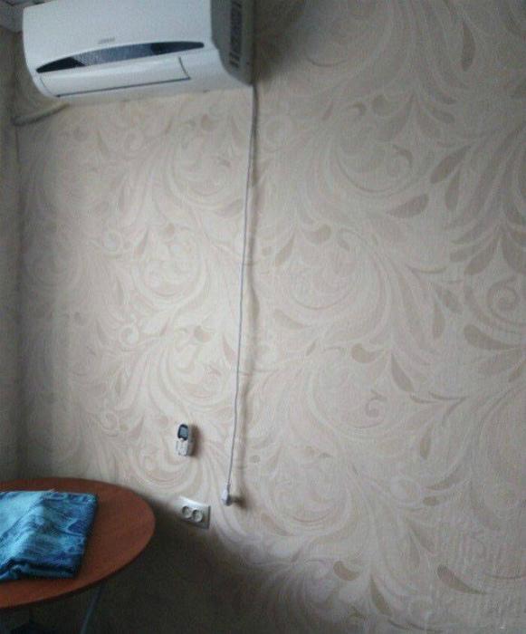 Мы в редакции Novate.ru уверены, что этот шнур еще вырастет. | Фото: Izismile.com.