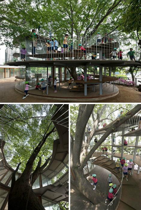 Детская площадка, построенная вокруг дерева.
