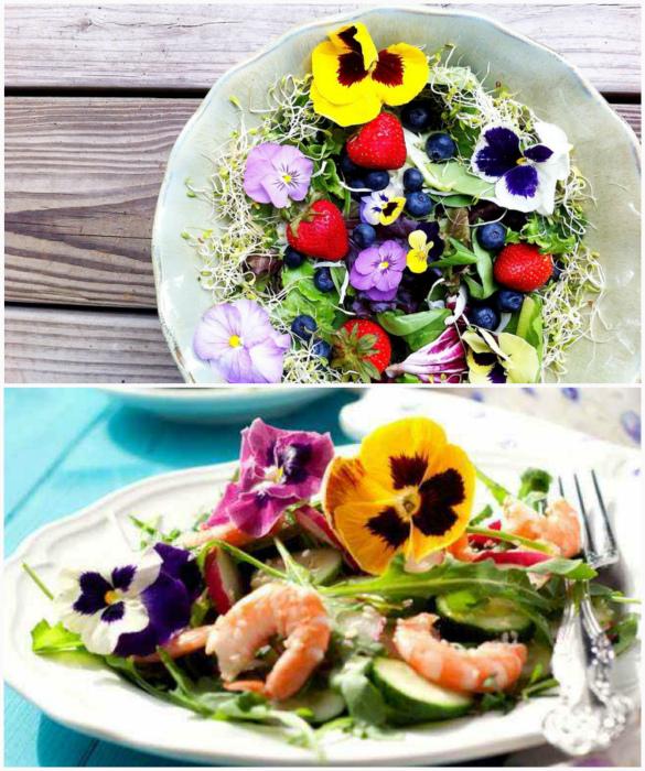 Съедобные цветы в кулинарии.