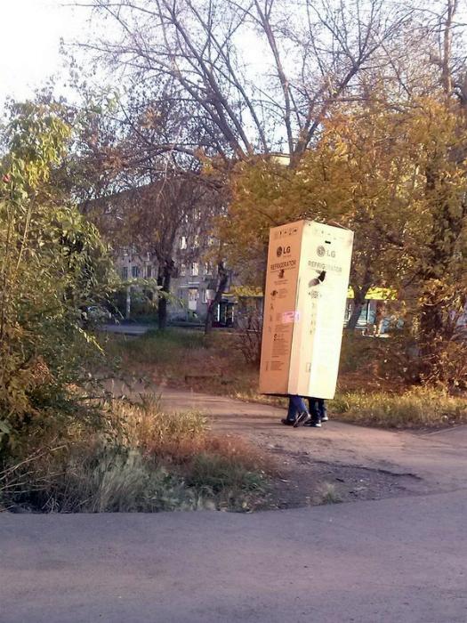 Странная парочка в коробке.