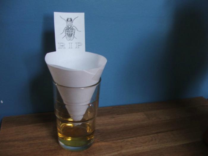 Винная ловушка для насекомых.