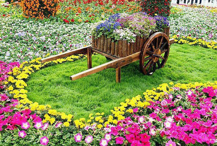 Пни с цветами 20