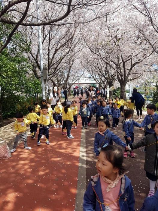Знаки отличия в детских садах. | Фото: Báo Mới.
