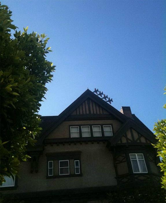 Интересная ситуация на крыше.
