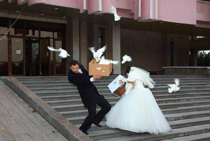 «Вот вам за всех тех, неаккуратно выпущенных голубей!»