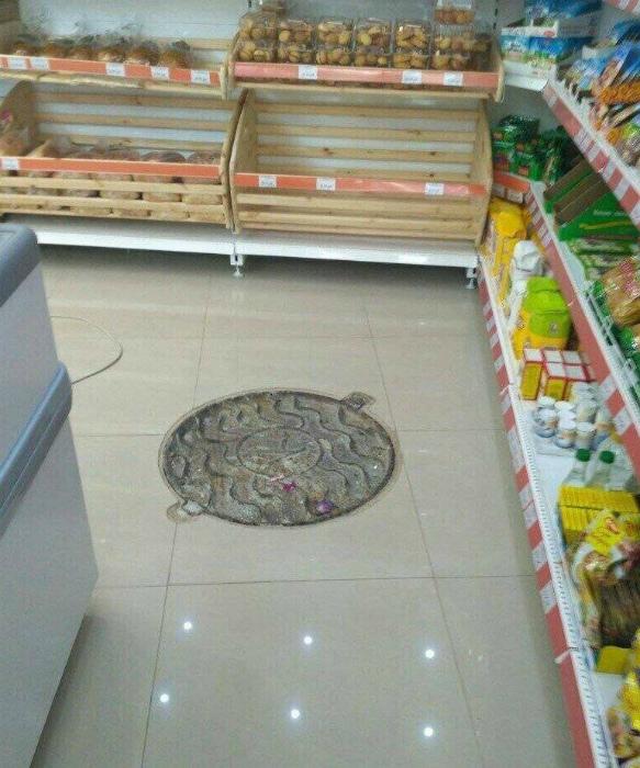 Вход для черепашек-ниндзя. | Фото: pixmafia.com.