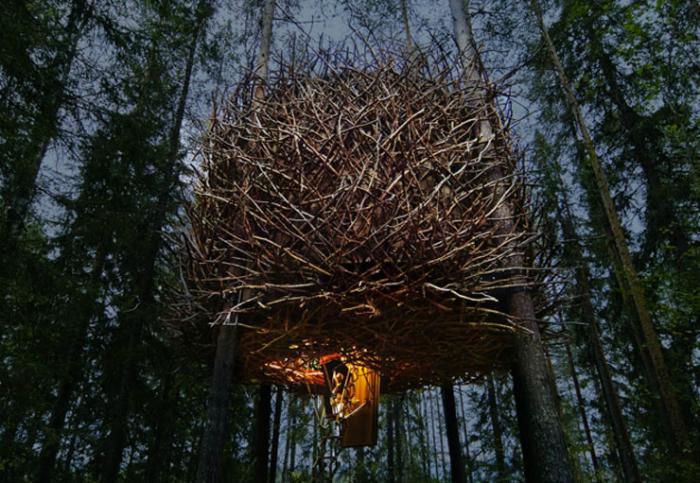 Фантастический отельный номер на дереве в виде огромного птичьего гнезда.