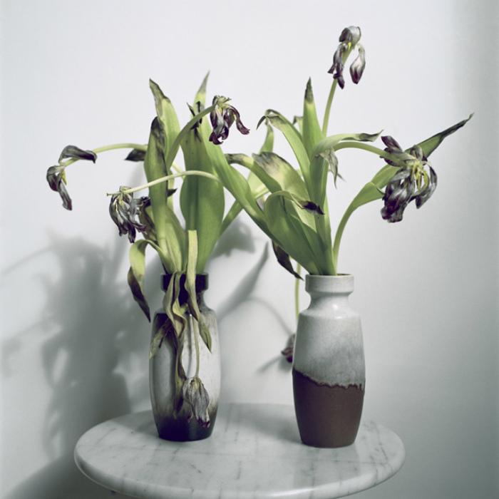 Увядшие букеты цветов.