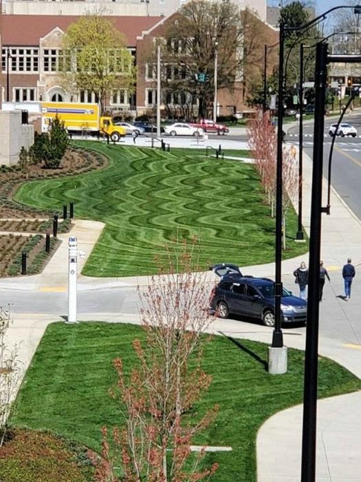 Не газон, а произведение искусства. | Фото: eBaum's World.