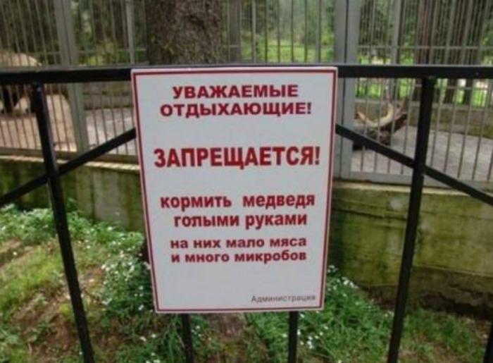 «Кормить медведей только мясистыми частями тела!»