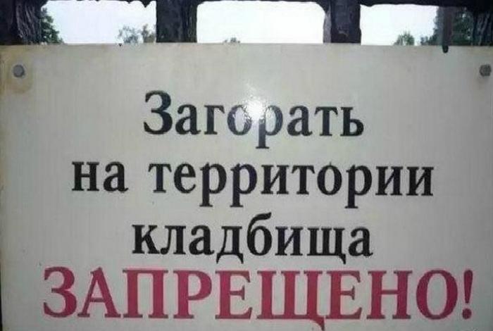 «Черт, а я себе уже и плиту облюбовала!» | Фото: Fishki.net.