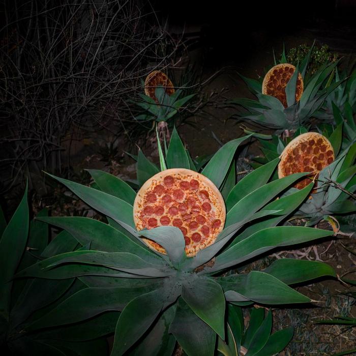 Урожай пиццы.