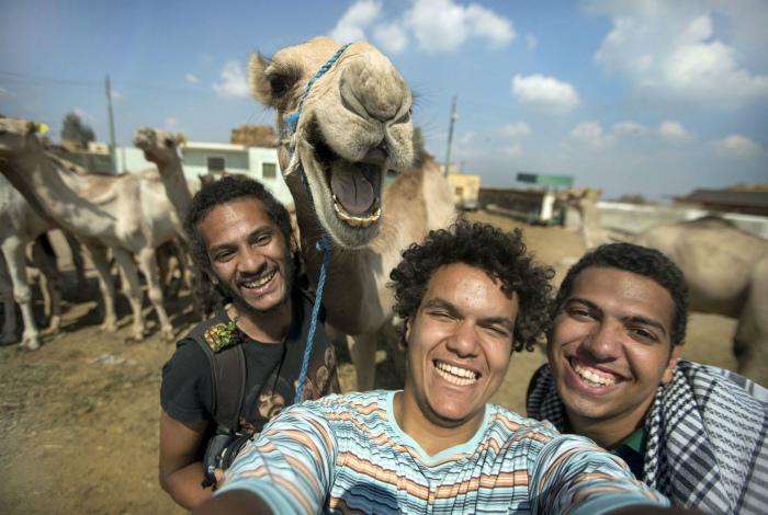 Фото с верблюдом.