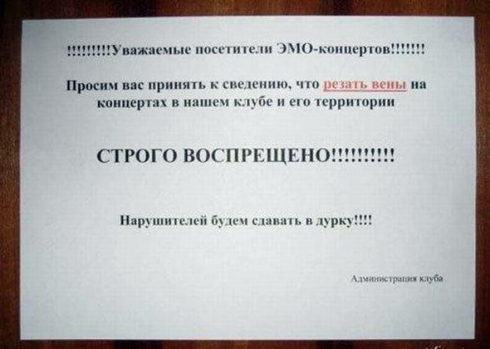 Novate.ru предупреждает, резать вены категорически запрещено. | Фото: OrangeCat - Блог про інтернет.