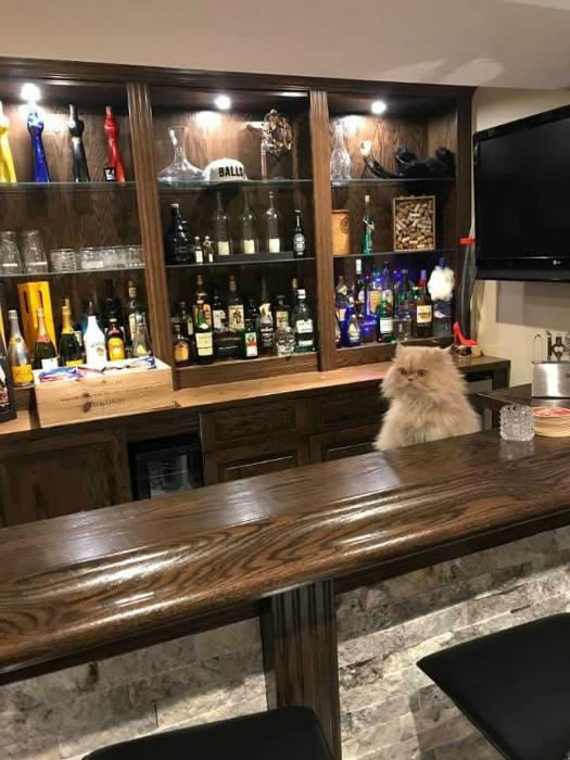 Случай в баре. | Фото: Twizz.