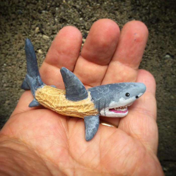 Совсем не страшная белая акула.