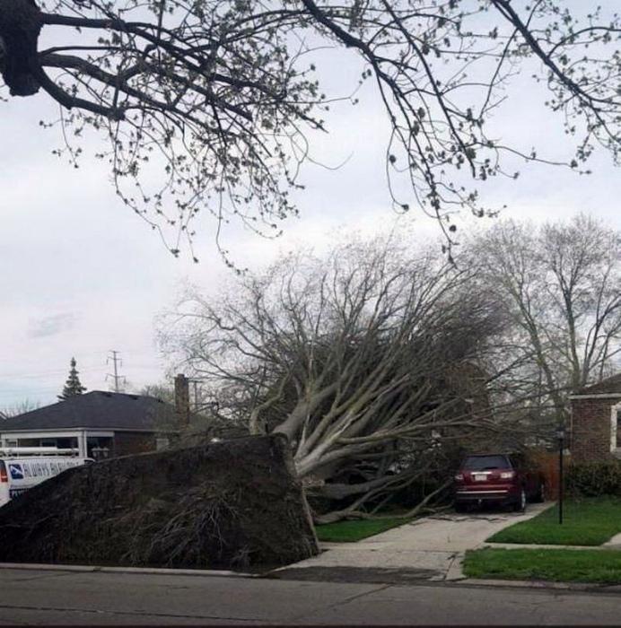 Дом был за деревьями, а теперь под... | Фото: veetbox.