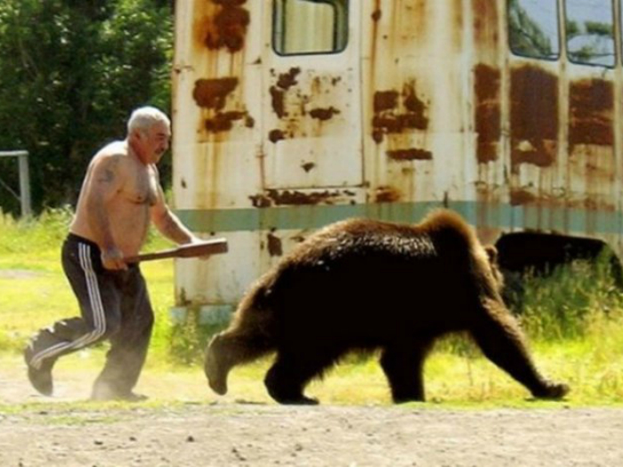 Мужчина прогоняет медведя, который забрался к нему на участок.