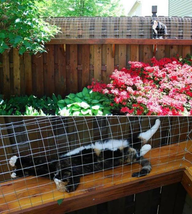 Тоннель для кошки.