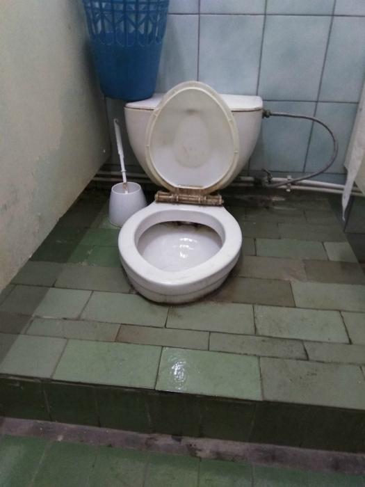 Дизайн туалетной кабинки.