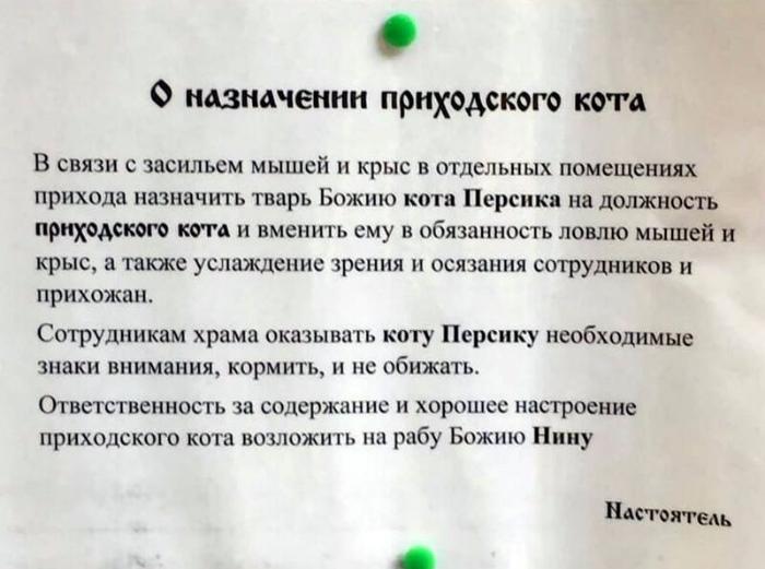 Начало Персиковой карьеры. | Фото: ЯПлакалъ.